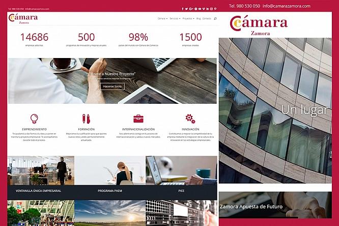 camarazamora.com